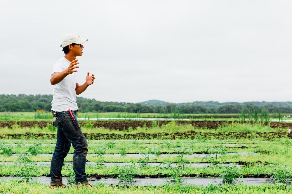 Dig Inn Farm -3.jpg
