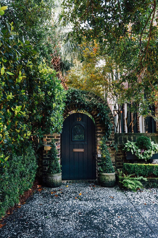 Nico Schinco - Charleston 2017-14.jpg