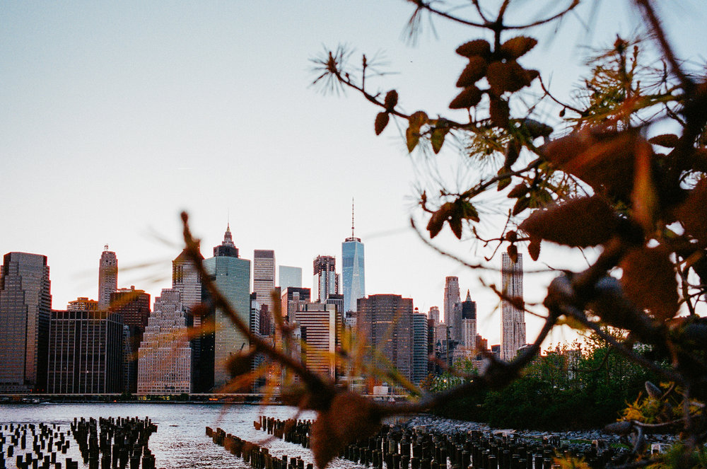 Brooklyn Bridge Park 4_Leica_Portra_400.jpg
