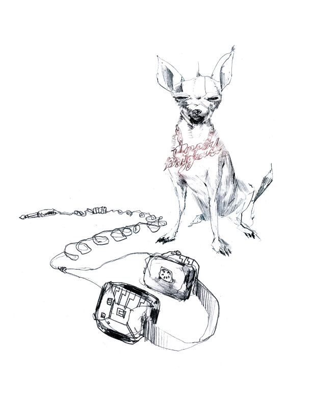 David-Choe-Chihuahua-Headphones
