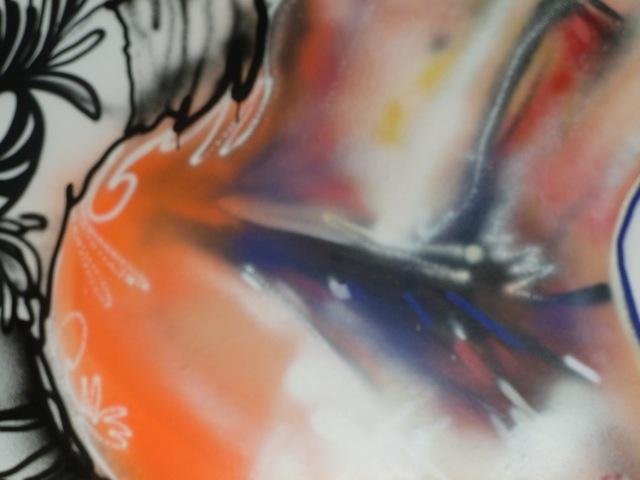 David-Choe-DVS1-Nuart-2011-02