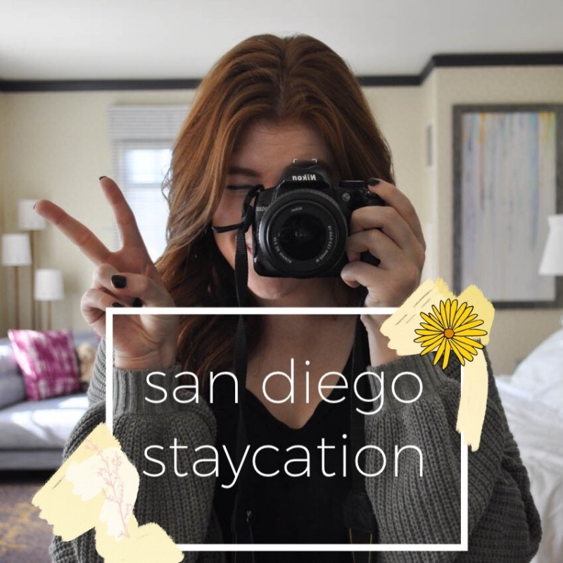 SDStaycation-header.jpg