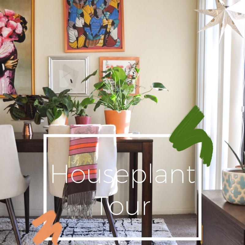Houseplant Tour - Header Image.jpg