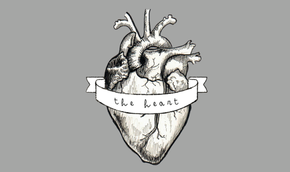 The-Heart-logo-590x350.png