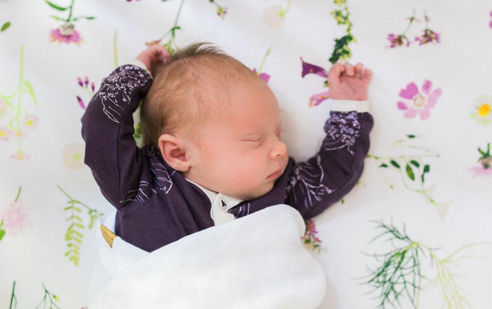 vanessa wyler photography pewaukee newborn lifestyle