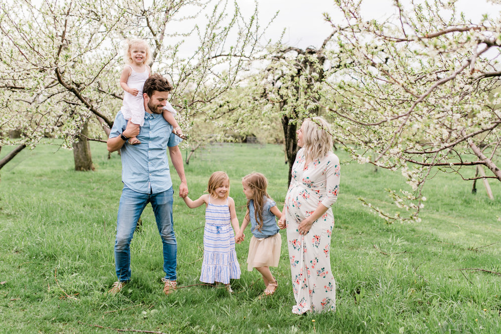 apple orchard photography maternity vanessa wyler pewaukee photographerapple orchard photography maternity vanessa wyler pewaukee photographer