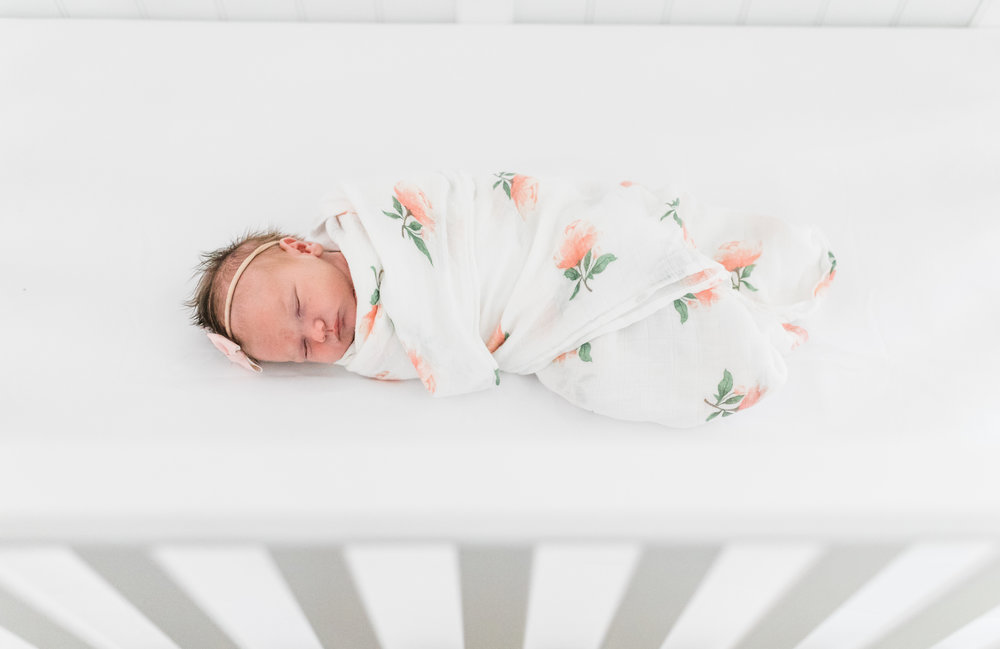 vanessa wyler waukesha newborn photography