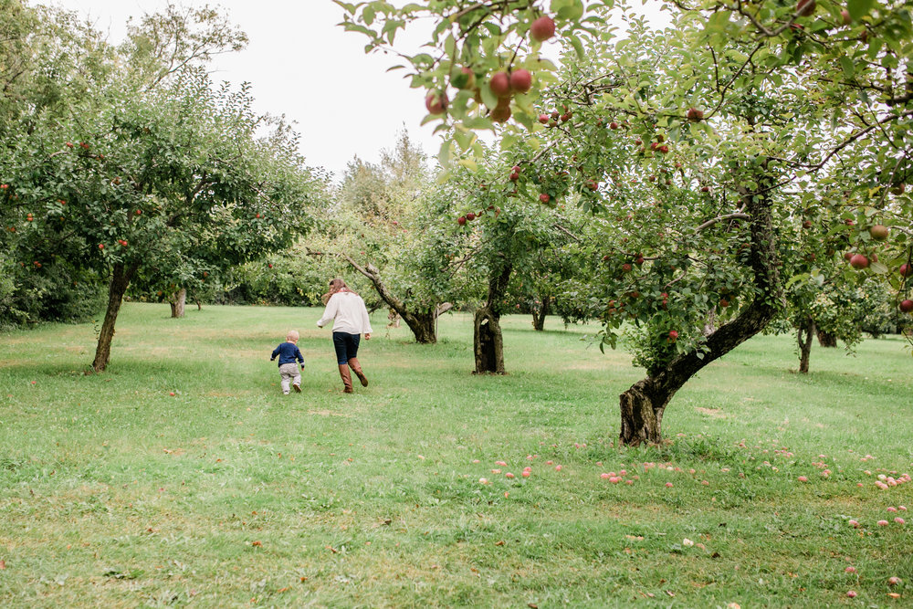 apple orchard photography waukesha vanessa wyler