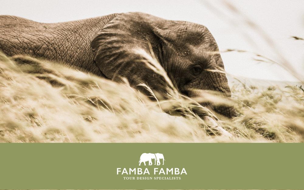 famba_logo.jpg