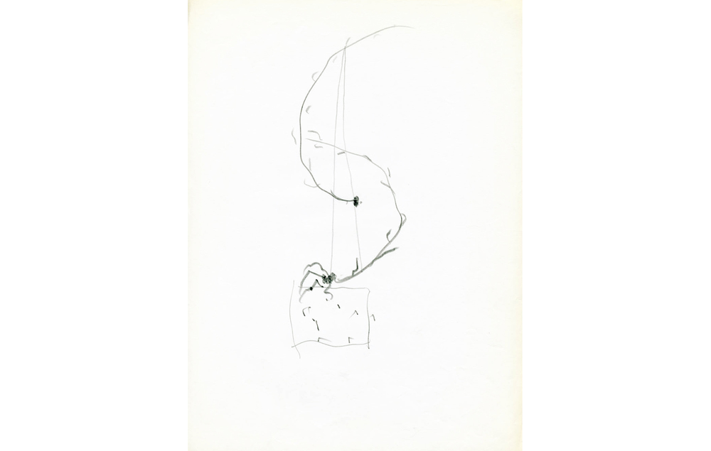 grafito sobre papel (3).jpg