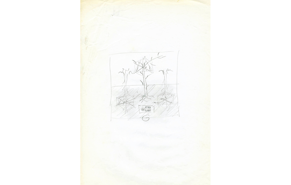 naturaleza espanola movidik (4).jpg