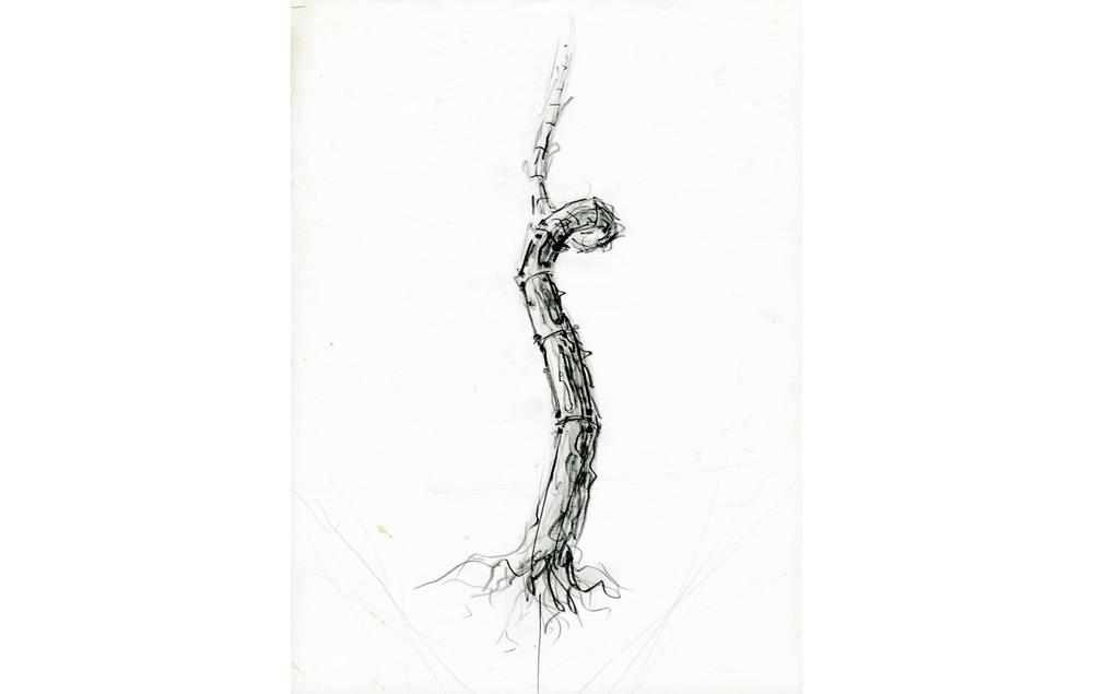 grafito sobre papel (58).jpg