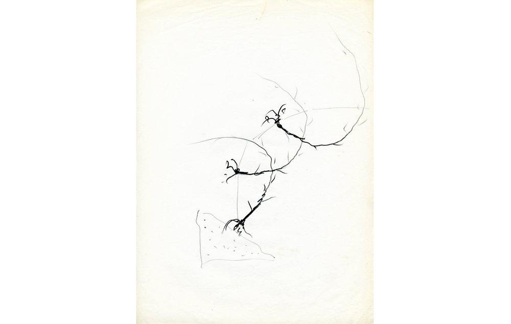 grafito sobre papel (6).jpg