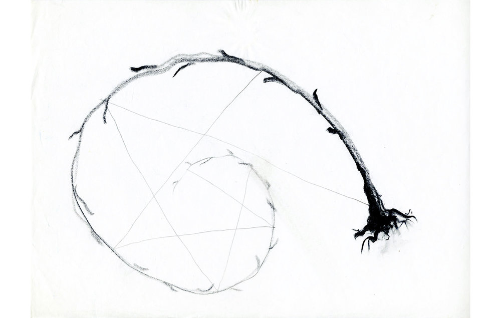 grafito sobre papel (44).jpg