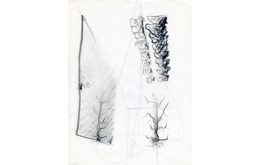 rosa de los vientos (4).jpg