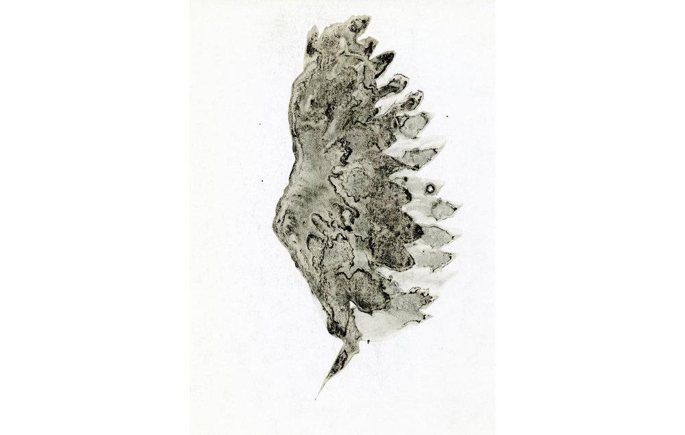 tintas chinas plumas (1).jpg