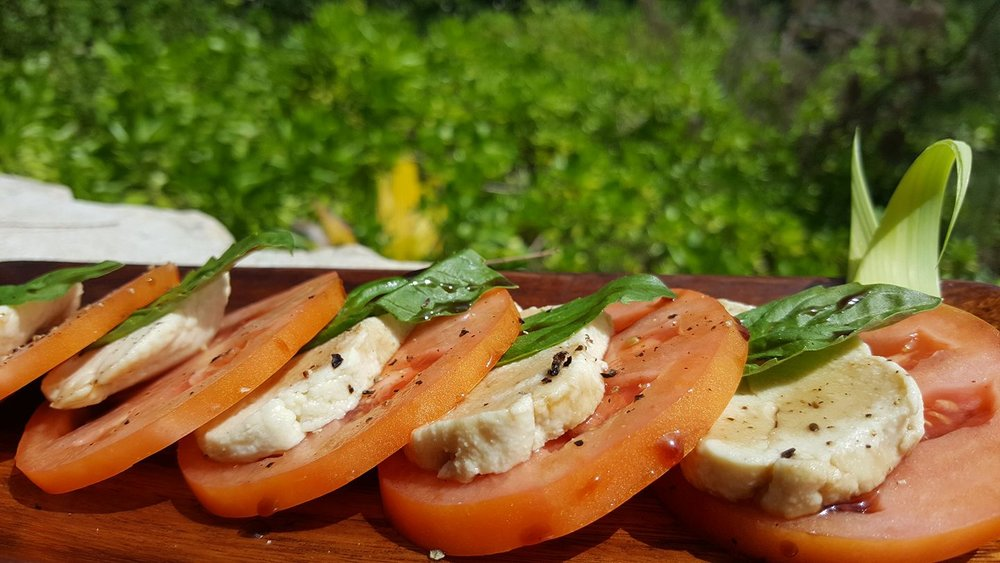 VIVO Vegan Caprese Salad.jpg