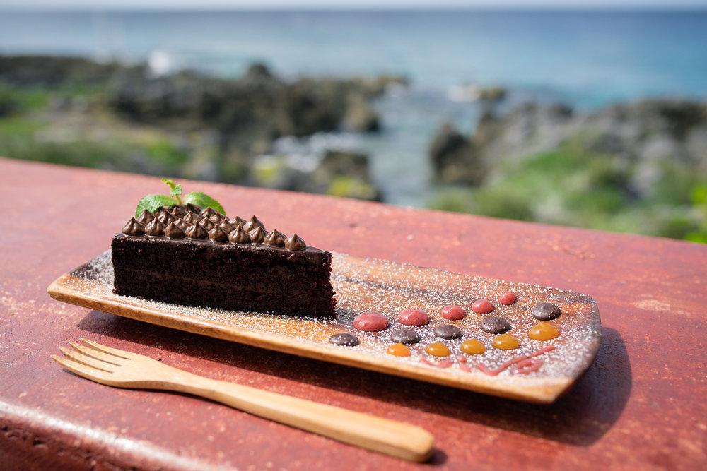 VIVO Cake.jpg