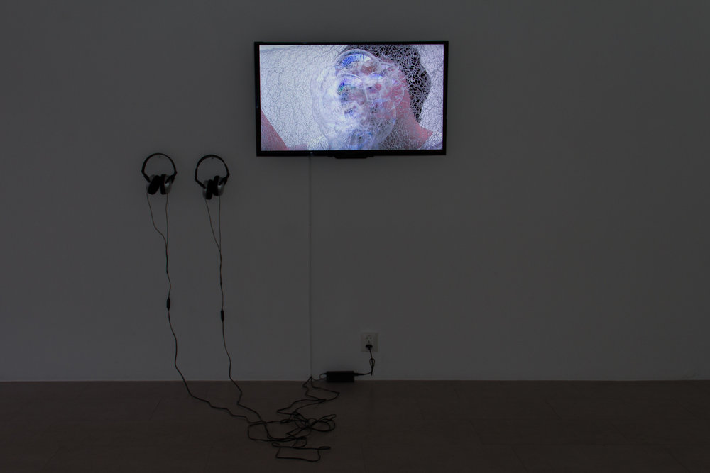 Cast Movements: Leitmotif , 2017, single channel video, no sound, 10:51min. As part of the exhibition  Mesh: a Nordic video art marathon , Galleri CC, Malmö, Sweden, 11 May - 3 June 2018. Photograph Raffaele Piano.