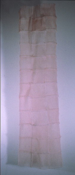 Fruit Sleeve, 2005