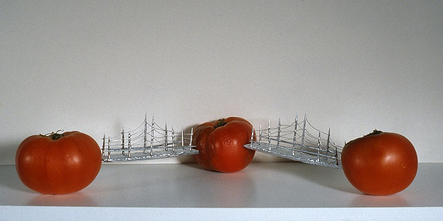 Three Tomatoes, 2005