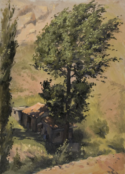 The Windy tree, Alcala