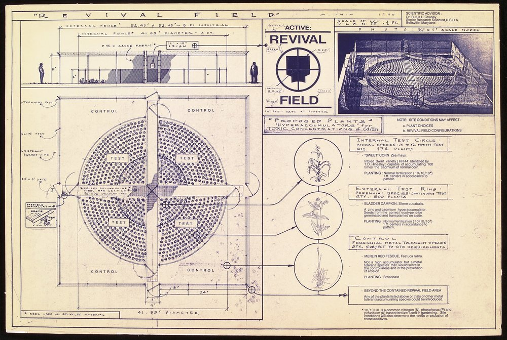 Mel Chin, blueprint for  Revival Field,  1990 .