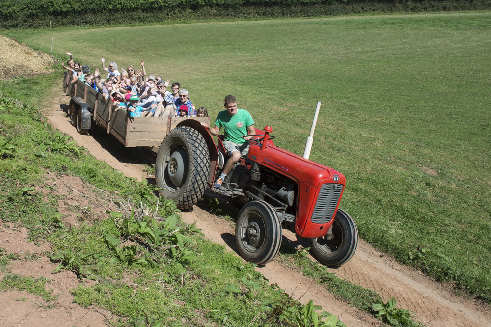 Tractor Rides- (11).jpg