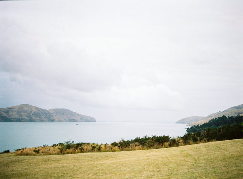 celine_chhuon_engagement_governor_bay_christchurch_newzealand_destination_photographer (6).jpg