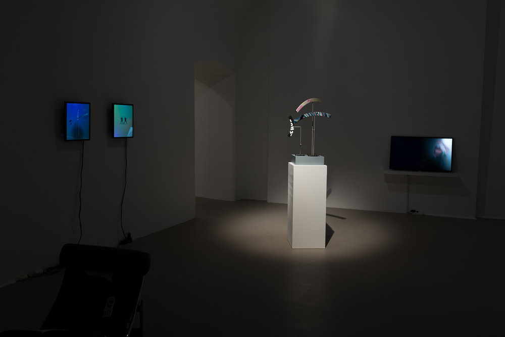 Exhibition View, Charim Galerie, Nemocentric, curated by_Bassam El Baroni, 2016, Photo: Charim Galerie