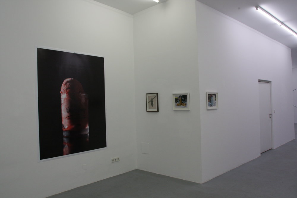 Exhibition View, Galerie Knoll, curated by_Simina Neagu, 2012, Photo: Galerie Knoll