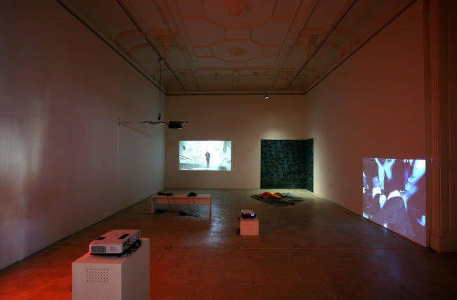 Exhibition View, Galerie Krinzinger, I Remain Silent, curated by_Erik Schmidt, 2010, Photo: Galerie Krinzinger