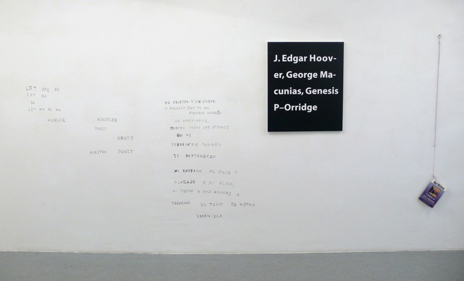 Exhibition View, Galerie Martin Janda, curated by_Matthew Higgs, 2009