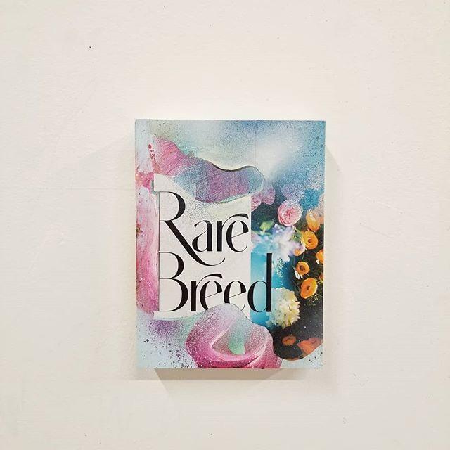 Rare Breed - mixed media on panel #Art #ContemporaryArt #CanadianArt #RareBreed #Paiva #GaryPaiva