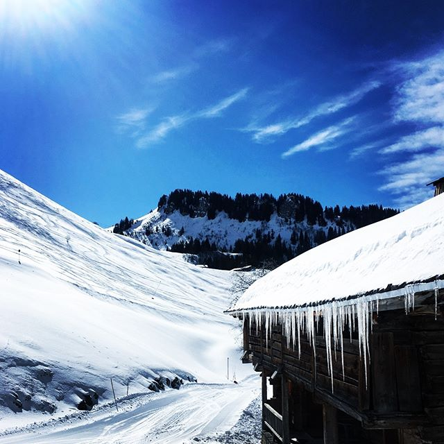 ❄️❄️❄️A Fresh Foot of Powder at La Ferme❄️❄️❄️ 💙💙💙Last minute ski breaks 24-31st March or 7-14th April. 💙💙💙 🏔🏔🏔As a friend of La Ferme you get a discount, so get in touch!🏔🏔🏔 LINK IN BIO