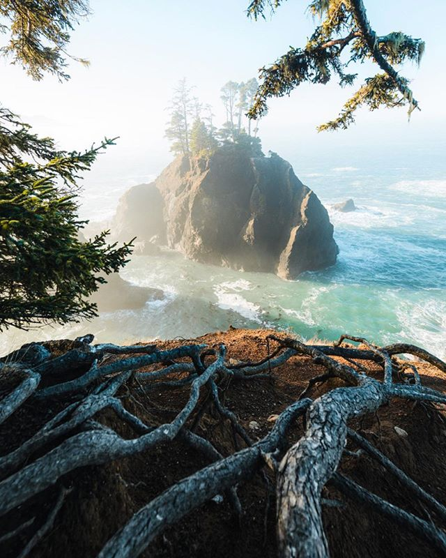 From a hazy sunrise along the coast 🌊 Photo by @dylankato #pnwonderland