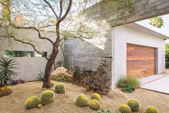 Jardín cactus.jpg
