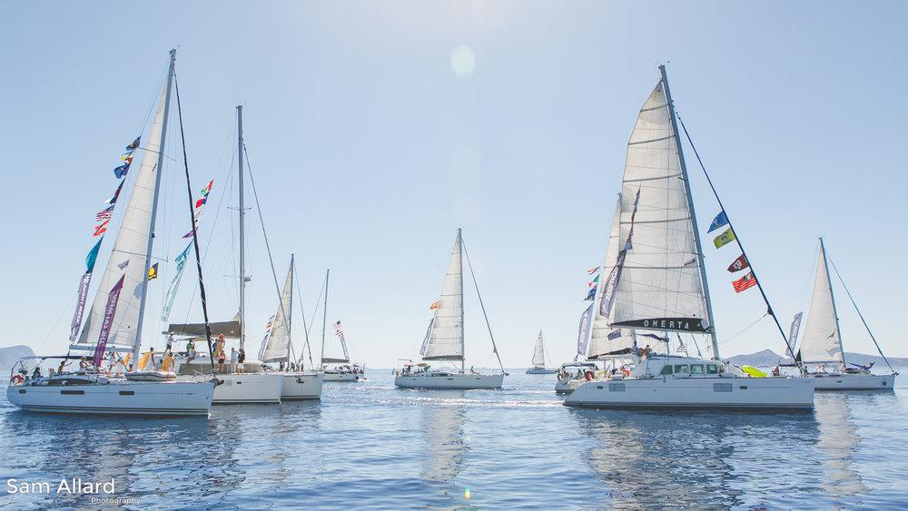 SamAllard_YachtWeek_Week33_522.jpg