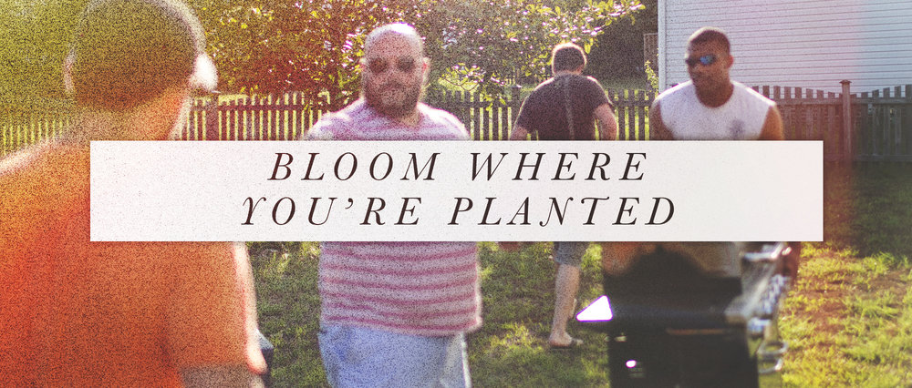 Bloom Where You're Planted.jpg