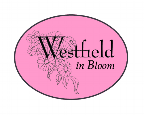 WIB Test Logo 2.png