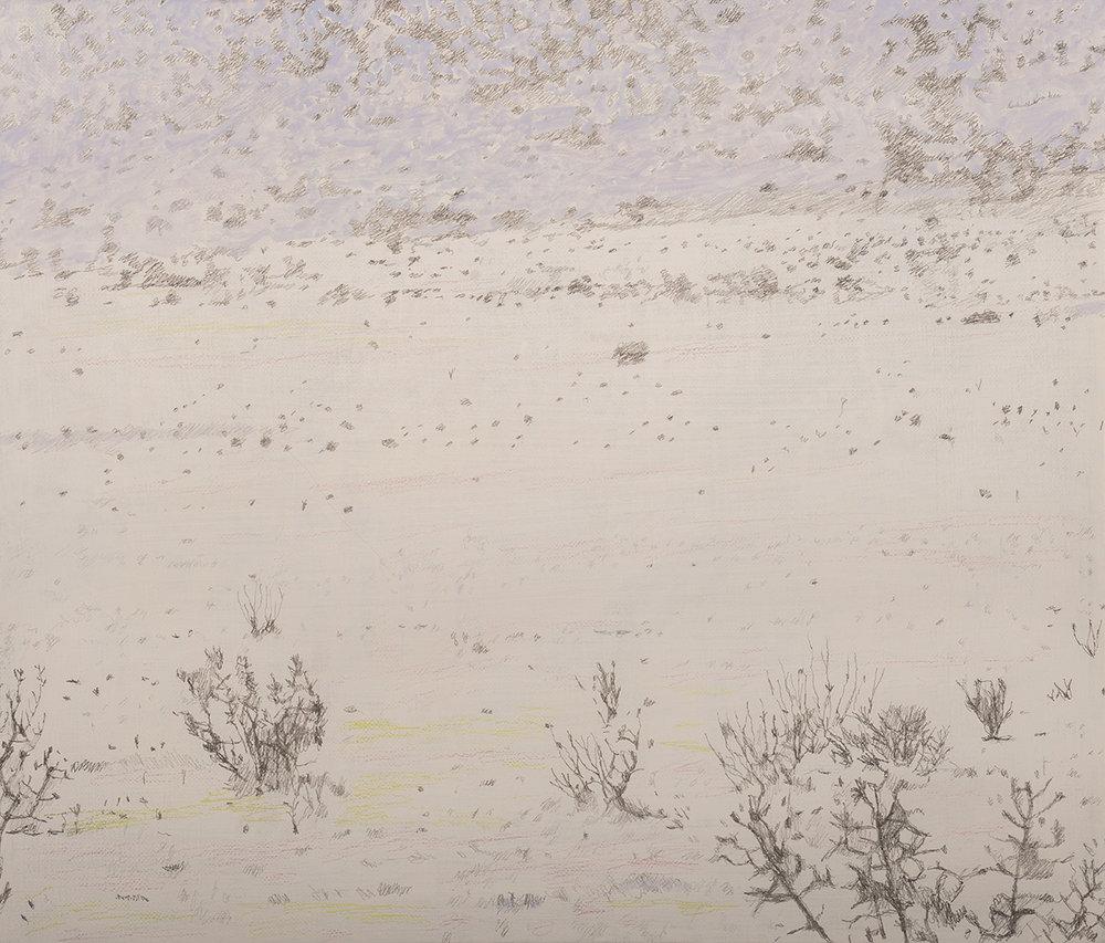1. Study, Death Valley, 2012.jpg