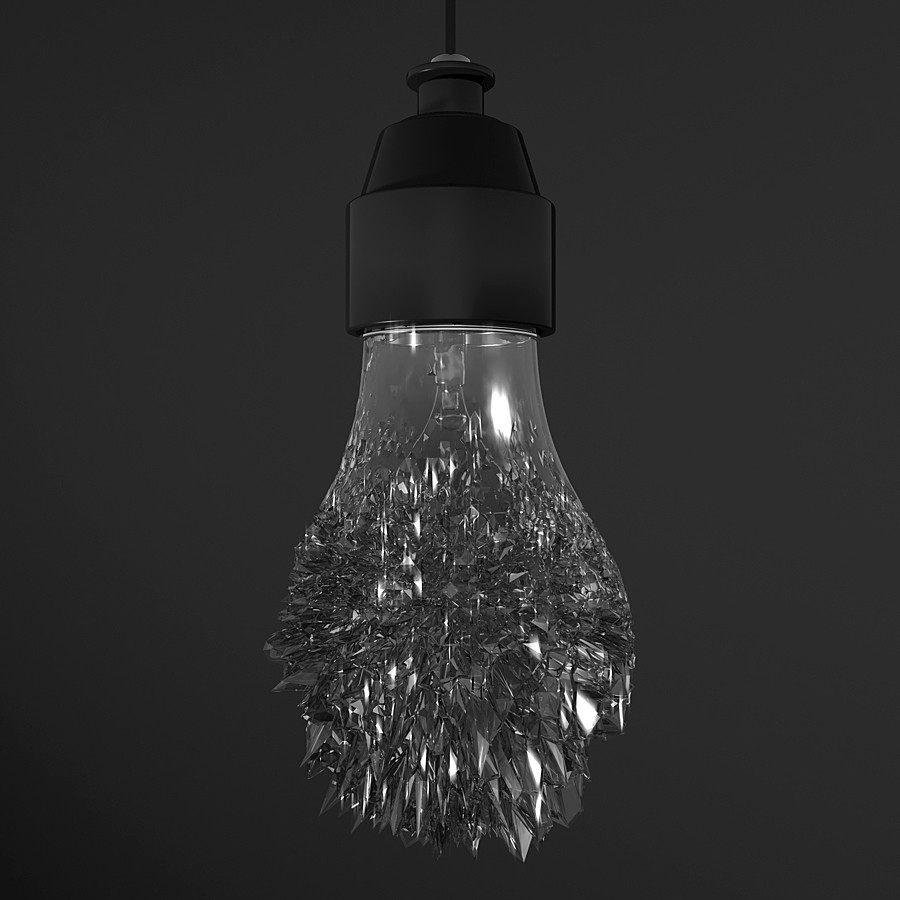 16 47 bulb02 jpg
