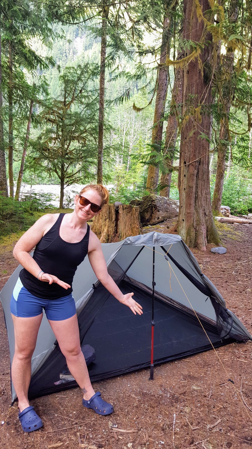 You can also use 2 trekking poles in an A shape but I find one verticle pole is adequate. & Review: Tarptent Rainshadow 2 u2014 MITTENCAMPER
