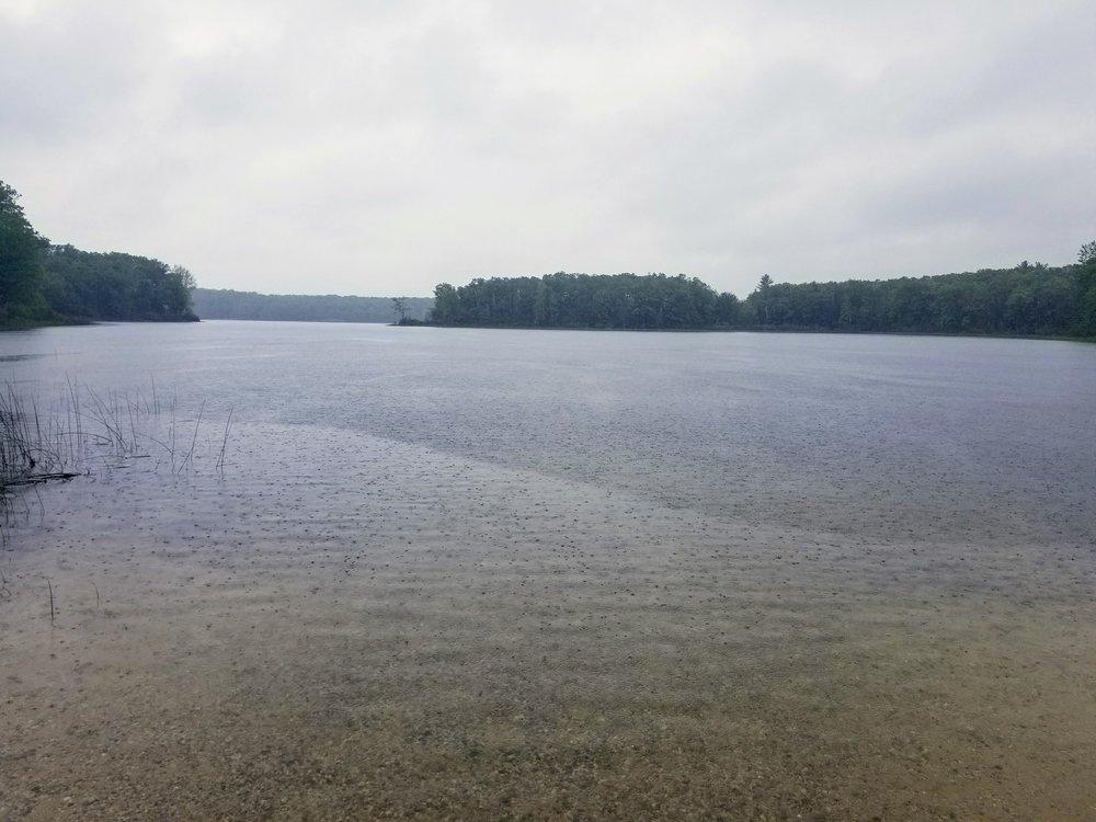 Rainy Nichols Lake