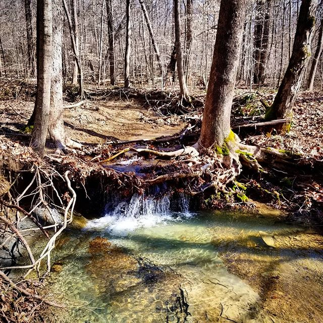 Had a great group hike of the 47 mile #knobstonetrail in Indiana this weekend. It was a muddy ass kicker with a lot of ups and downs, so very little photo and video was done. This waterfall was cute tho. @x_hiker @natefleming @_brandontbrooks @bimmer_dog_hikes . . . . #hike #camping #backcountry #outdoors  #adventure #explore #wilderness #lightenup #exploremore #ultralightbackpacking #camp #lifeofadventure #greatoutdoors #neverstopexploring #takelessdomore #seekthetrails #wildernessculture #optoutside #getoutside #exploreeverything #nature #everytrailconnects #backpacking #ultralight