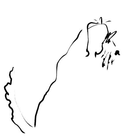 jake.3.jpg