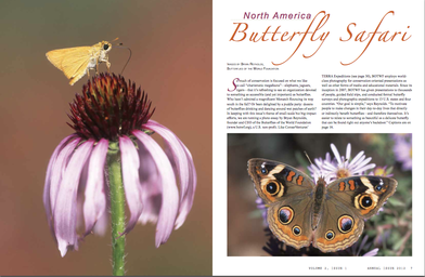Click image to see more pages from the Annual 2011 edition.