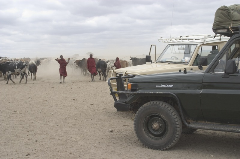 maasai roadblock.jpg