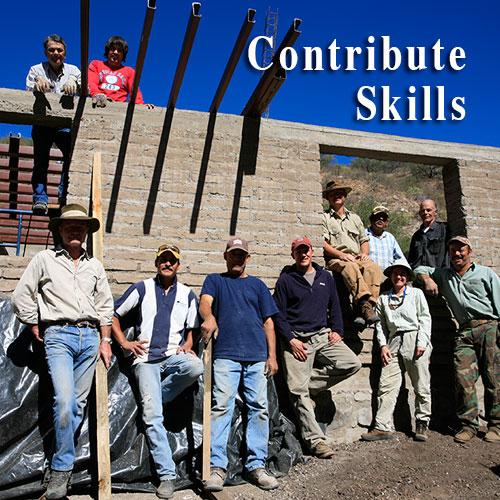 contribute_skills.jpg