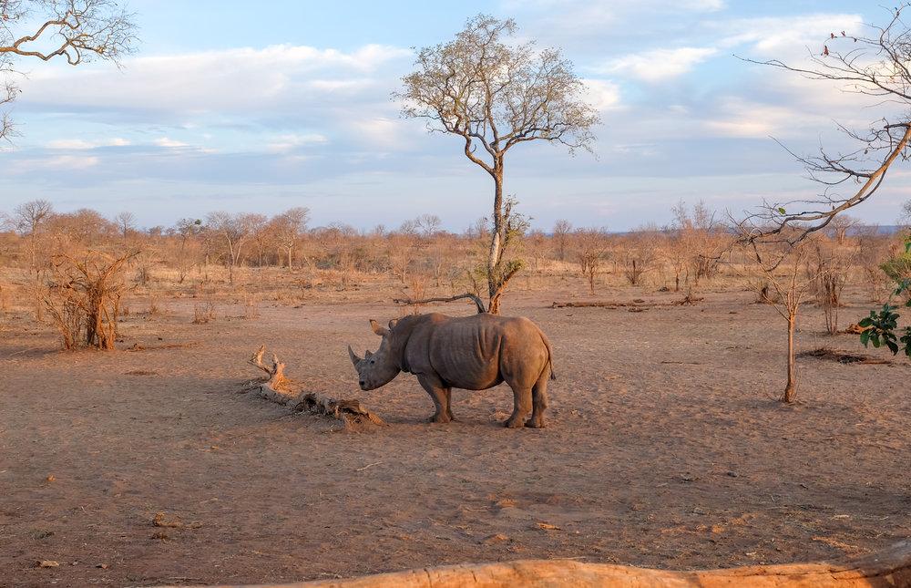 Mosi-oa-Tunya National Park / Zambia